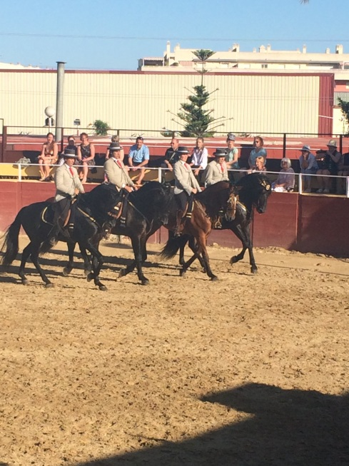 Riders on Andalusian horses showing off the high school riding.